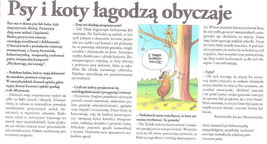 Psy i koty łagodzą obyczaje, Angora, 14.10.2012
