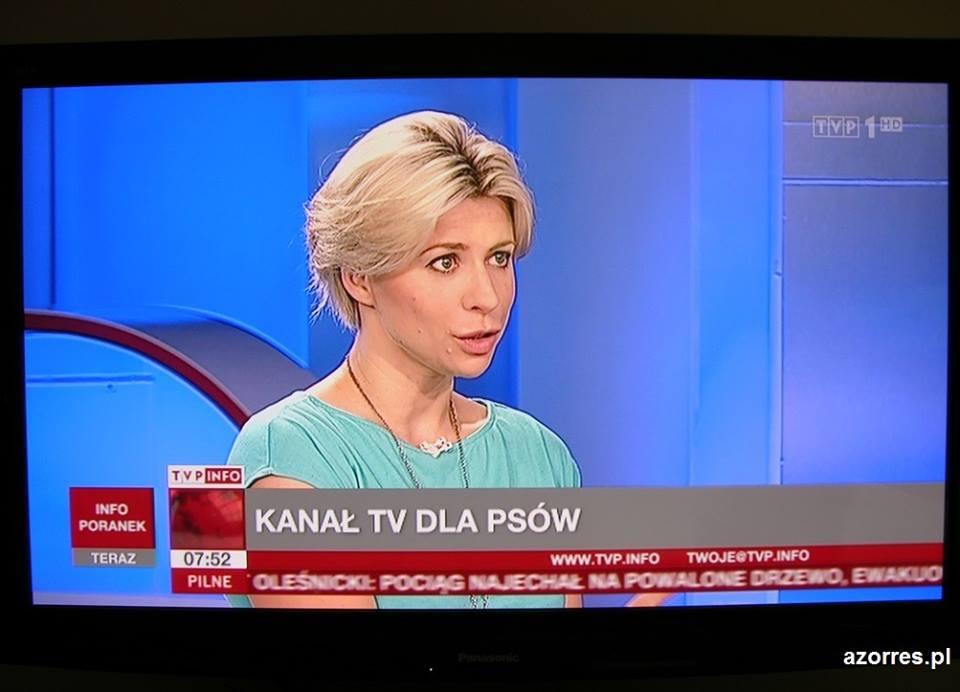 Aneta Awtoniuk o telewizji dla psów