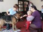 Psia Lekcja dla maluszków w Wołominie